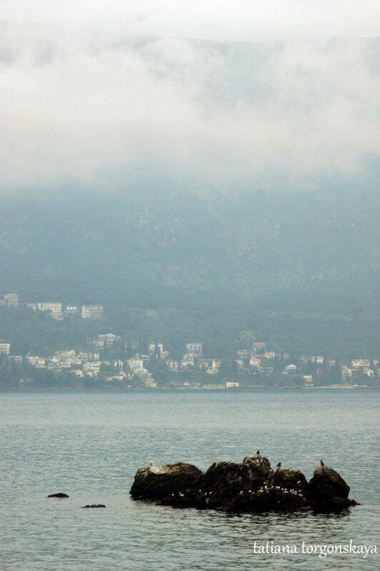 Вид в сторону Нивице