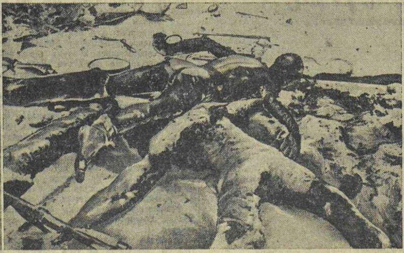 «Известия», 15 января 1942 года, идеология фашизма, что творили гитлеровцы с русскими прежде чем расстрелять, зверства фашистов над пленными красноармейцами