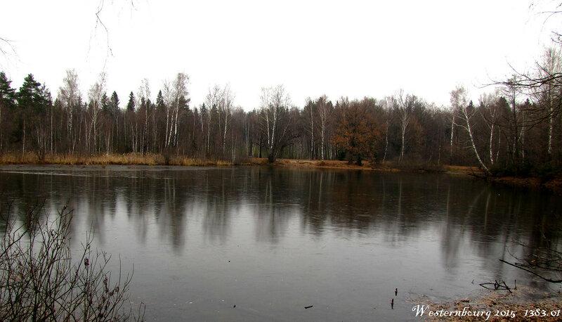 1383.01 Первый лёд в Алмазово.