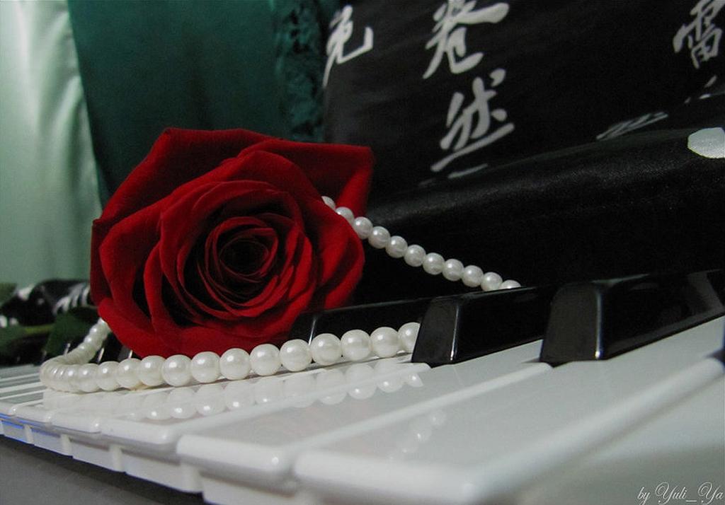Rose_Pearl_Piano_by_Yuli_Ya.jpg
