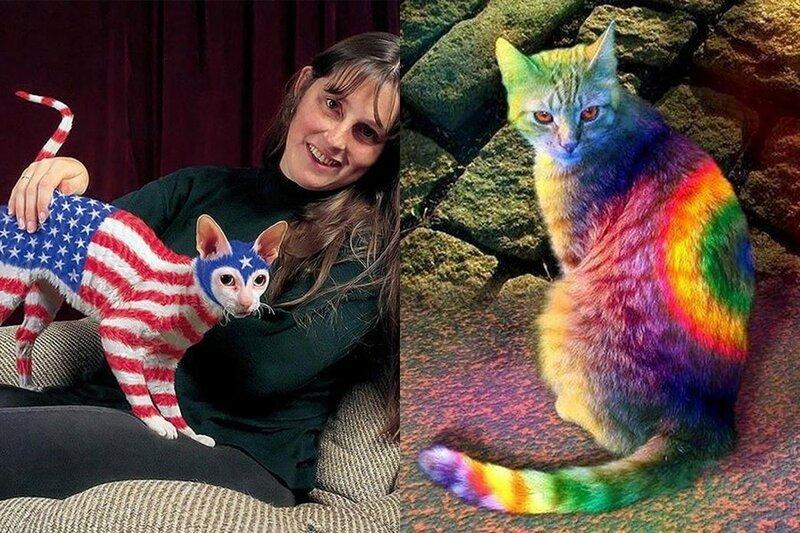 Что такое кэтпейнтинг? Форма искусства раскрашивания или издевательство над животными?