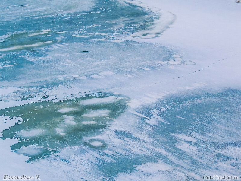 Свияга зимой