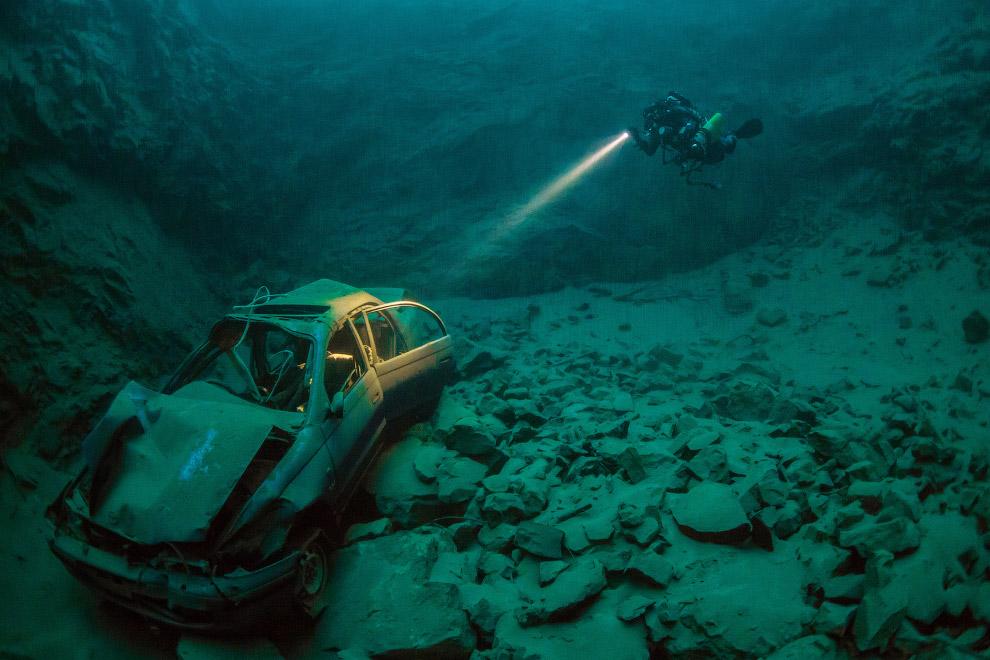 16. У поверхности. Форель, Поуис, Уэльс. (Фото Trevor Rees | Underwater Photographer of the Yea