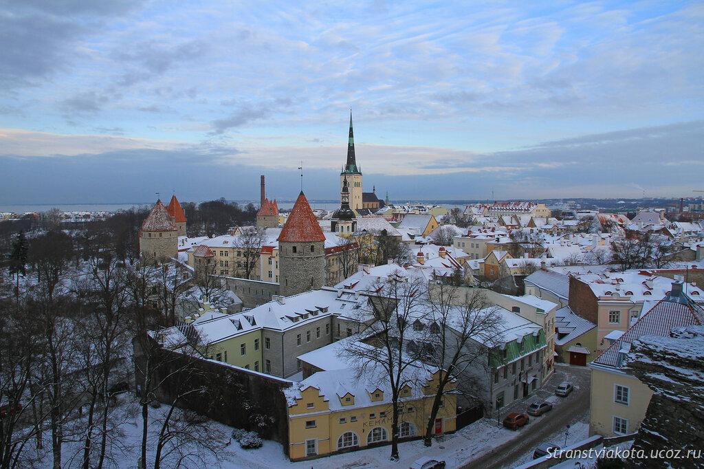 Эстония, Таллин