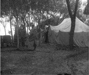 19. 1914. Военный лагерь Гроховского полка. Синявы, Галиция
