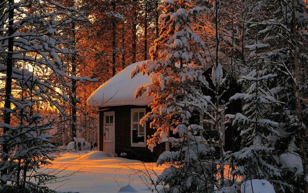 winter-sunset-trees-842837-background-wallpapers.jpg