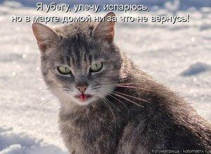 https://img-fotki.yandex.ru/get/64827/194408087.13/0_1286ee_939f13d7_M.jpg