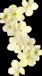 Spring_Kiss_Palvinka_el (42).png