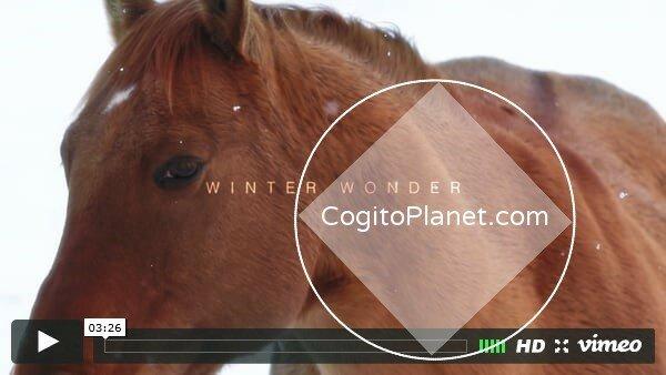 Америка: Зима в Колорадо (Time Lapse Video)