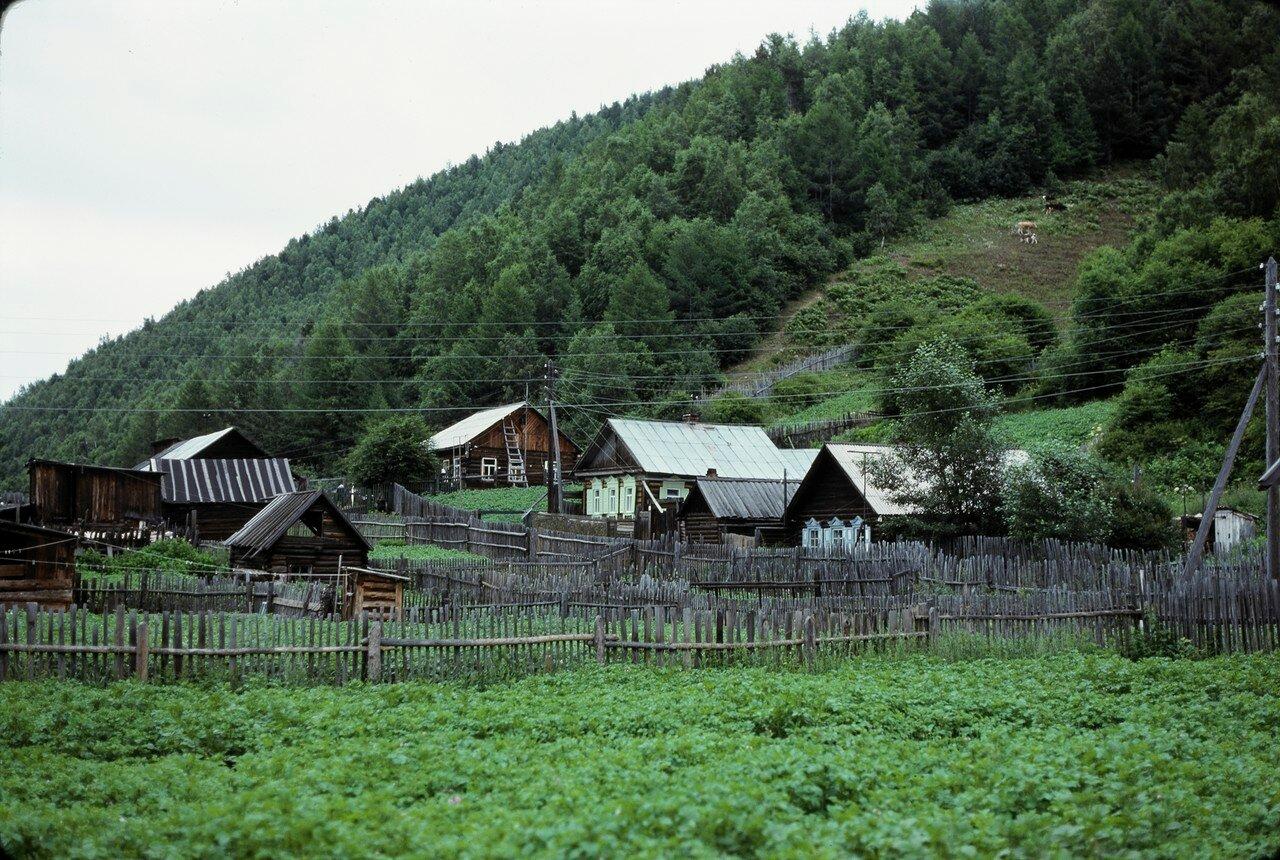 Листвянка. Дома местных жителей
