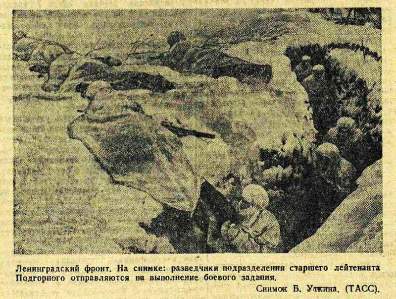 Красная звезда, 11 января 1942 года