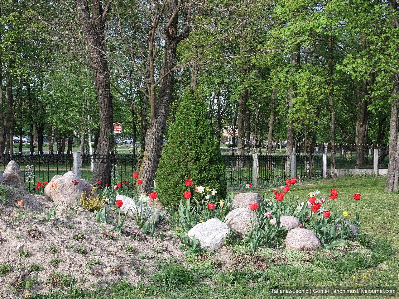 Весна в Гомеле