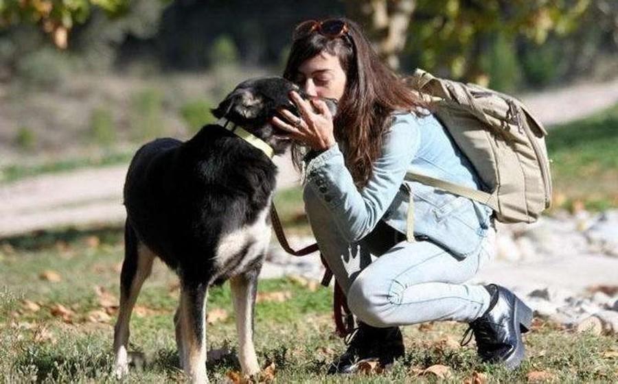 Женщина подобрала бродячую собаку и подарила ей новую жизнь В апреле прошлого года гречанка Валиа Ор