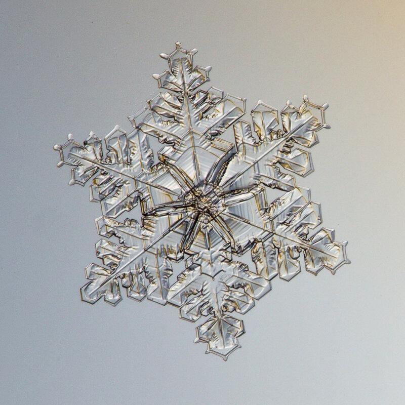 Рябиновая снежинка