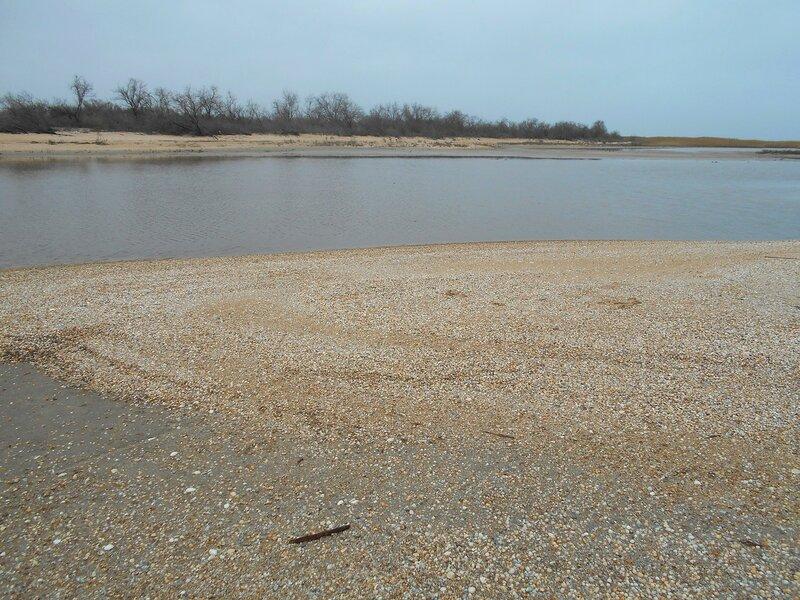 Пространства вод и песков ... DSCN4213.JPG