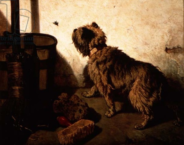 The Dog and the Fly, 1856