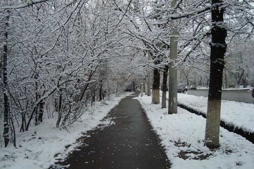 Синоптики обещают скорое наступление зимы в Молдове