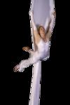 gym-acrobatie créalios