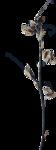 ldavi-ThePoet'sKeepsakes-driedflower3.png