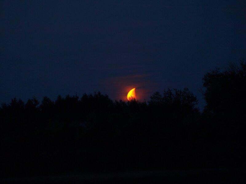 луна над лесом на противоположном берегу реки