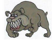Зубы собаки.