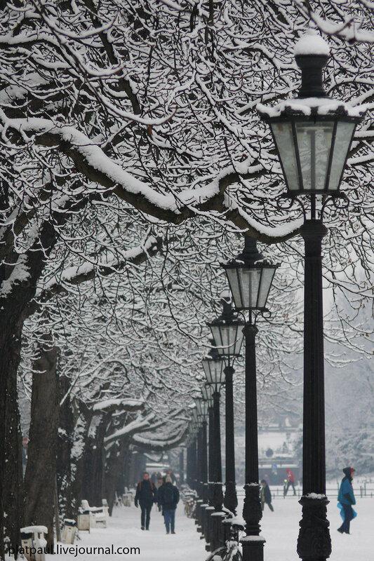 Зимний Бонн