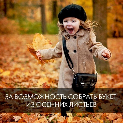 500x500_0xd42ee42a_13005092301410186590.jpeg