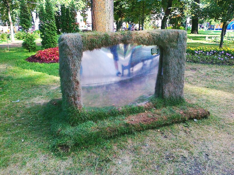 Телевизор из травы