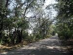 Альтернатива- поход. Велосипед. 70 км. 2012-08-03