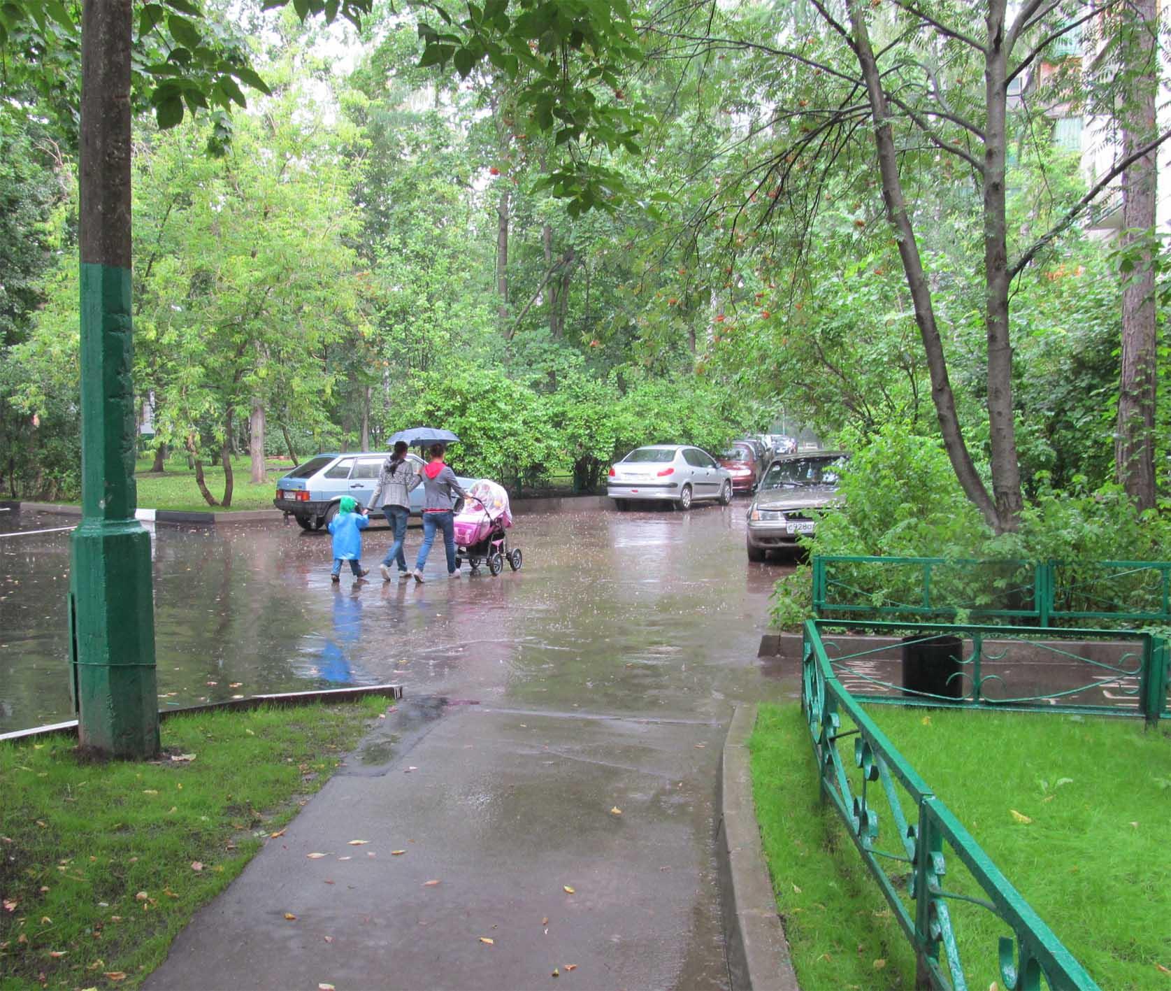 дождик, дождик, пуще.jpg