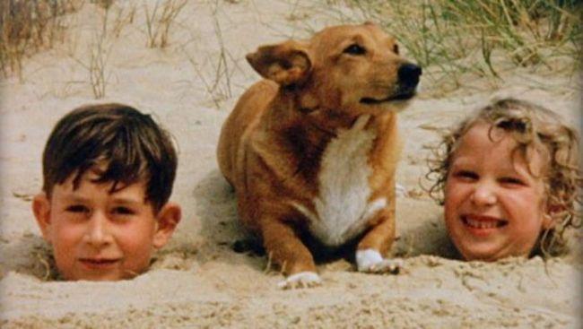 Дети в песке и собака прикольные фото