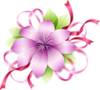 0_44984_73ec839b_S.jpg