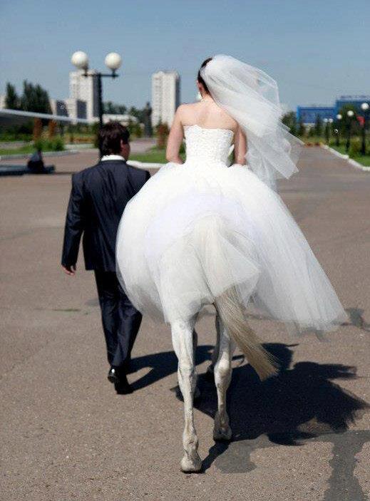 Только мы с конем