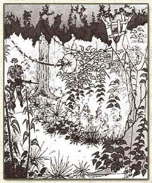 0 7ab17 902d97a8 orig Тоннели и ловушки вьетнамских партизан