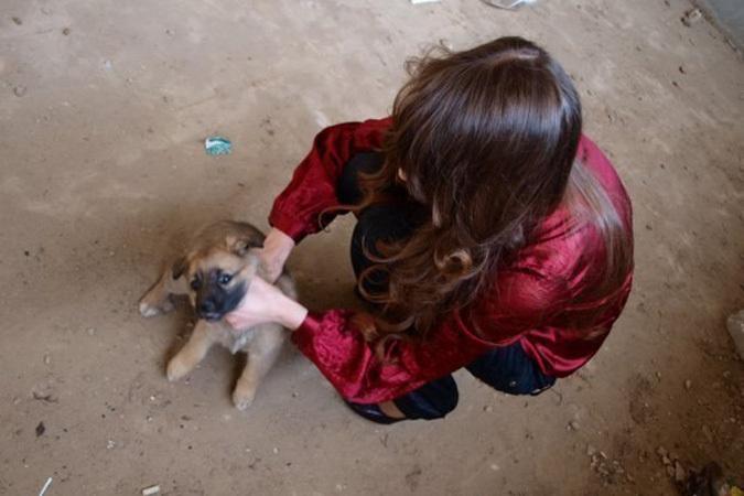 animal-girls-foto