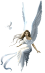 a anges (145).png