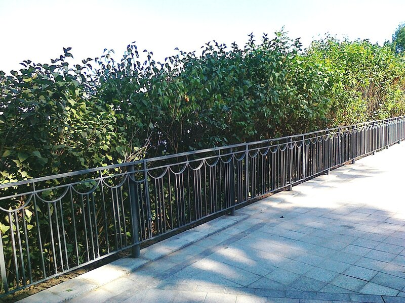 Новая ограда на Владимирской горке
