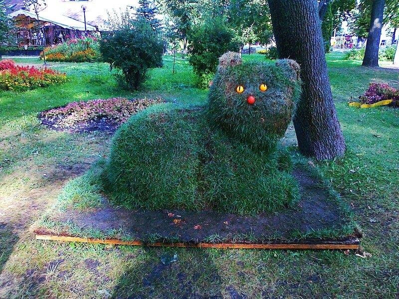 Кот из травы в парке Шевченко