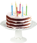 priss_Birthday_cakecluster3.png