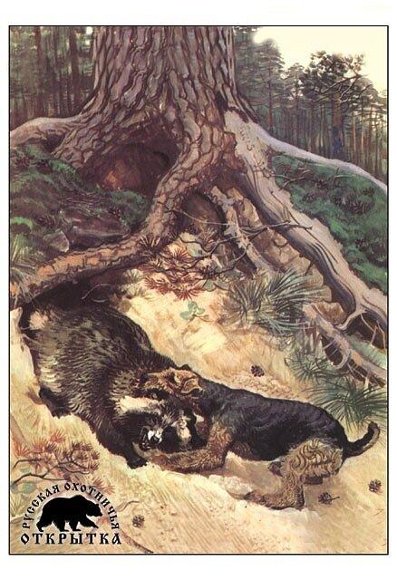 ...низкорослых вельштерьеров, скотч-терьеров и ряда других пород было преследование лисиц и барсуков в норах.