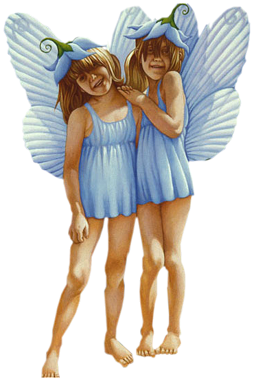 a anges (78).png