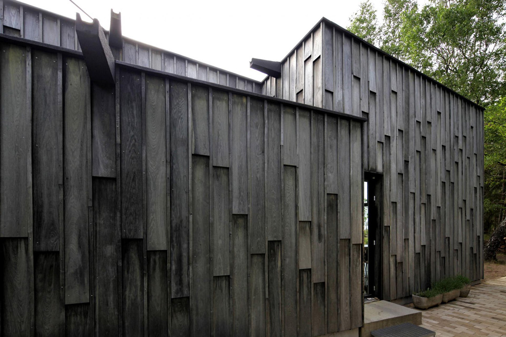 forest-house-3.jpg