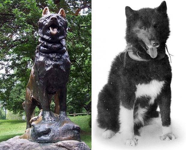 Собаки в истории - два героя