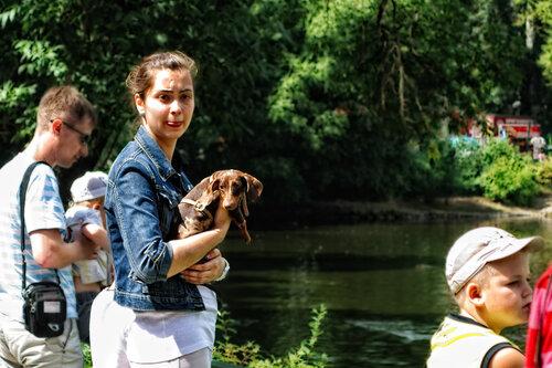 Собаки в Московском зоопарке