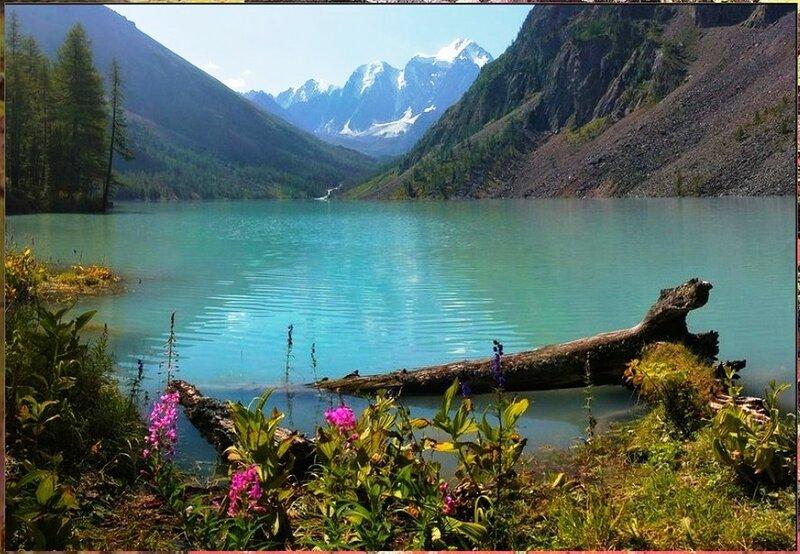 Природа, пейзаж, фото из интернета (221).jpg