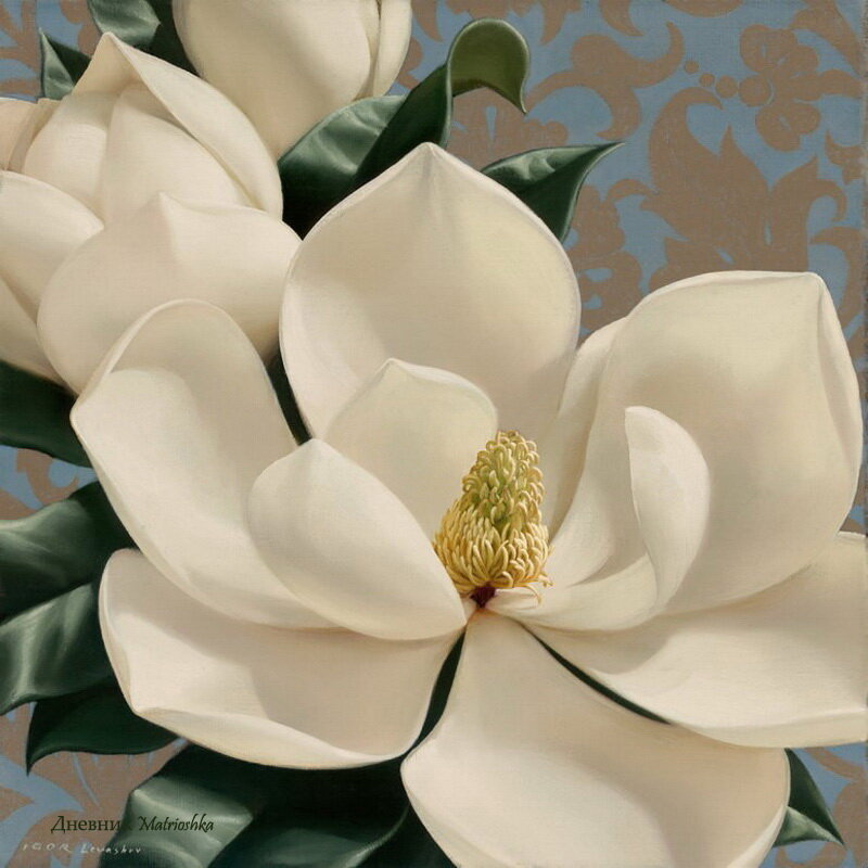 Shema-vyshivki-krestom-Dolce-Magnolia (600x600, 112Kb) .