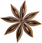 ial_slc_star_anise.png