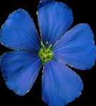 Blue Flower 4.png