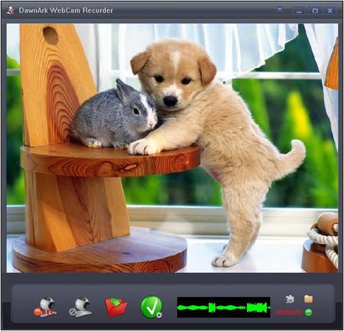 видео запись с веб камеры