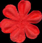 KAagard_CircusMagic_Flower3.png